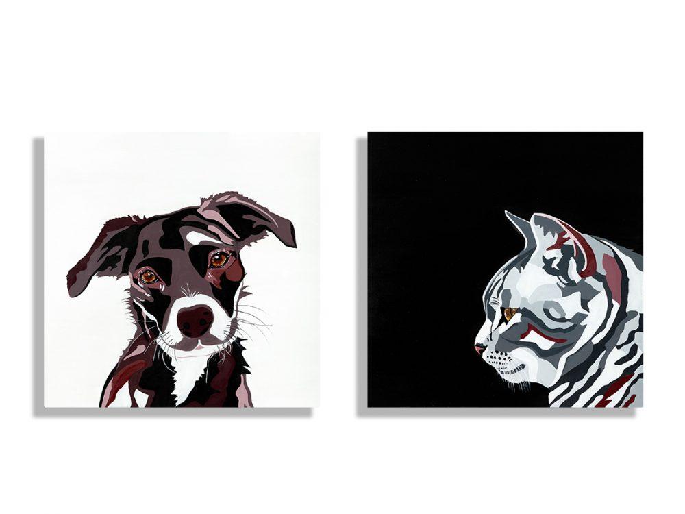 זוגות כלב וחתול
