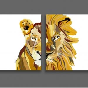 סט ציורים לביאה ואריה (רקע לבן)